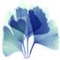 Praxis für Psychotherapie und Körperpsychotherapie
